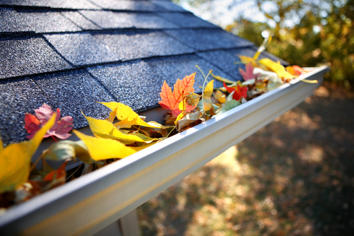 Autumn Checklist: Simple Home Maintenance Ideas for Fall