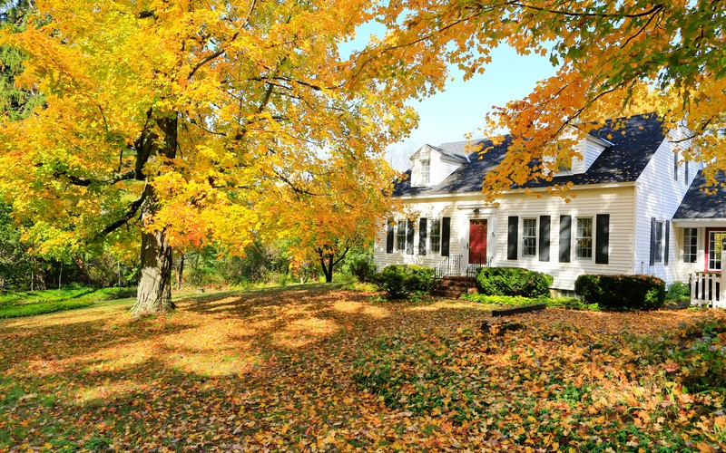 Fall Checklist for Florida Homeowners
