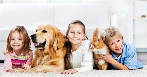 Pet Safe Cleaning Products