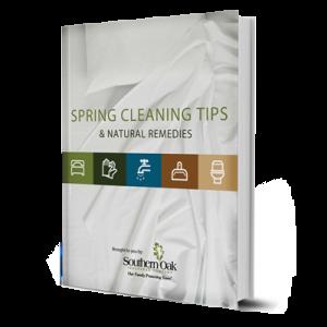 SpringCleaningTips-eBook-CTA